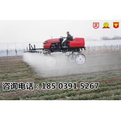 浙江自走式水旱两用喷杆喷雾机图片
