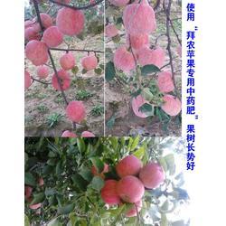 葡萄叶面肥_拜农生物(优质商家)_喷施葡萄叶面肥几天有效图片