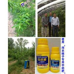 中医农业、拜农生物中医农业中药肥(在线咨询)、什么是中医农业图片