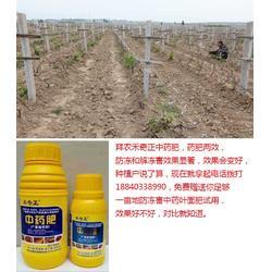 拜农植物防冻剂中药叶面肥、植物防冻剂、植物防冻剂品牌图片