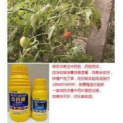 拜农防冻害中药叶面肥(多图)、低温冻害形成的原因、冻害图片