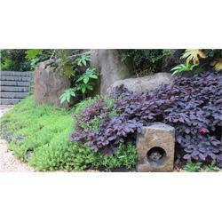 私家庭院景观设计_景观设计公司景观园林设计公司_沐森景观设计图片