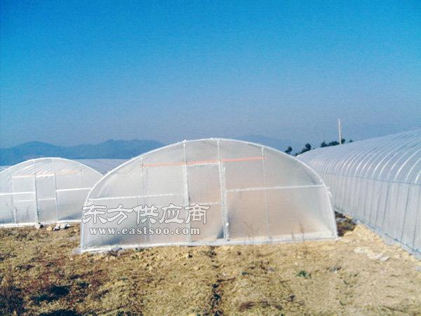 温室大棚搭建,马鞍山温室大棚,合肥建野温室大棚(多图)图片