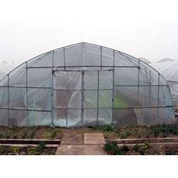 安徽温室大棚、合肥建野(在线咨询)、温室大棚造价图片