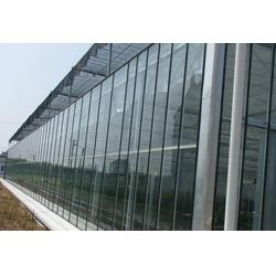 合肥大棚、温室大棚骨架、合肥建野大棚厂家图片