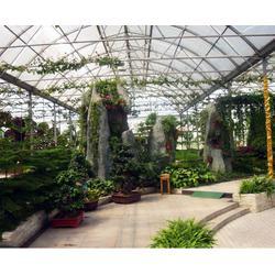 合肥建野大棚(图)、农村温室大棚建设工程、安徽大棚图片
