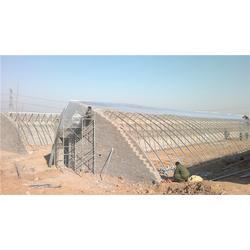白銀建溫室大棚多少錢 富農溫室大棚 溫室大棚圖片