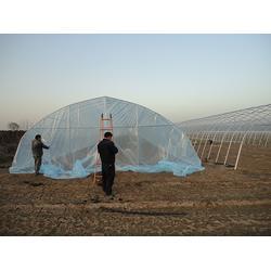 西安温室大棚建设|温室大棚|【富农温室】(查看)图片