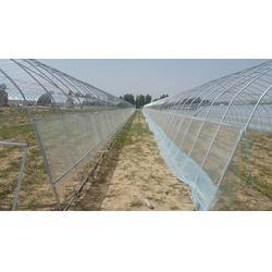 渭南几字钢温室大棚厂家、【富农温室】、温室大棚图片
