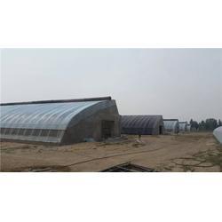 蔬菜大棚|【富农温室】|鹤壁建蔬菜大棚多少钱图片