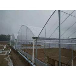 富农温室大棚 连体大棚建设厂家-山西太原连体大棚图片