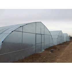 焦作塑料大棚(富农温室)焦作塑料大棚规格图片