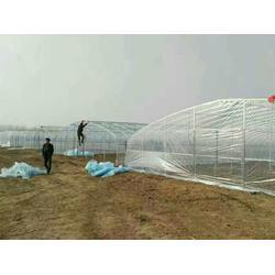 焦作塑料大棚建造-焦作塑料大棚(富农温室)(查看)图片