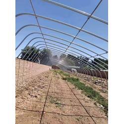 (富农温室)汉中椭圆管温室大棚安装厂家-椭圆管温室大棚图片