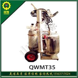 QWMT35推车式脉冲气压喷雾水枪 35L高压喷雾装置灭火必备图片