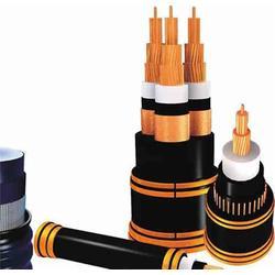 安徽天康公司(圖)、銅芯電力電纜、河南銅芯電力電纜圖片