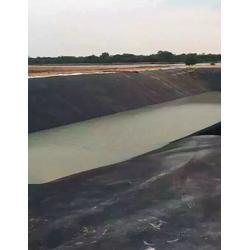 防渗土工膜,佳诺工程材料(在线咨询),防渗土工膜厂家图片