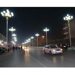 迪慶大型景觀燈-燎陽光電-迪慶大型景觀燈圖片