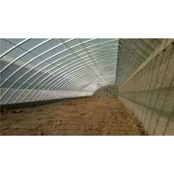 忻州一亩温室大棚多少钱,【诺博温室工程】,温室大棚图片