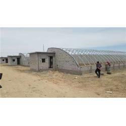 保温大棚设计建造 诺博温室工程 许昌保温大棚