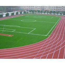 安徽塑胶跑道,四百米塑胶跑道造价,合肥德宇(多图)图片