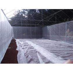 曲靖钢架大棚,一亩钢架大棚要多少钱,田丰钢架温室大棚图片