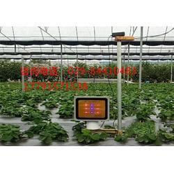 多肉植物补光灯-星丰科技-攀枝花植物补光灯图片
