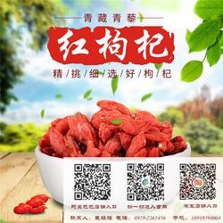 广西红枸杞厂家,玉林红枸杞,【青海青藜】图片