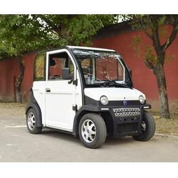 电动成人车|电动成人车|志远双伟科技(查看)图片