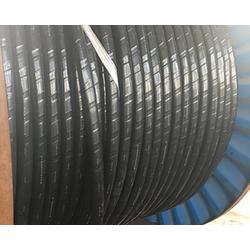 电力电缆-神龙电缆(优质商家)太原电力电缆定制图片