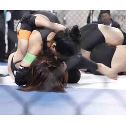 巴西柔术比赛规则,巴西柔术,木兰战纪(北京)体育图片