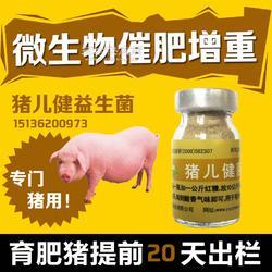 还在头疼猪为什么不长肉来看看益生菌图片