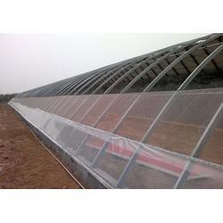鑫华生态农业|智能温室|智能温室造价图片