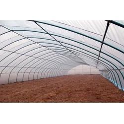 鑫华生态农业、光伏农业大棚、光伏农业大棚生产厂家图片