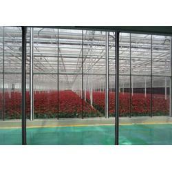 鑫华生态农业(多图) 温室制造 温室图片