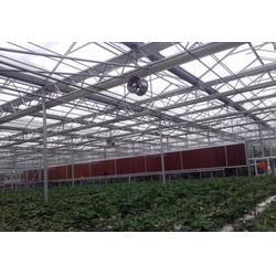 鑫华生态农业科技发展(多图),智能温室大棚,秦皇岛温室图片
