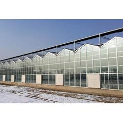 宜春温室_玻璃温室_鑫华生态农业(多图)图片