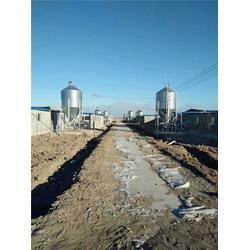 牧鑫养殖品质高低,镀锌板料塔供应商,周口镀锌板料塔图片