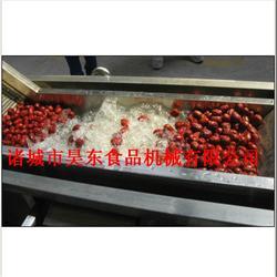 博尔塔拉土豆清洗机-土豆清洗机专业制造商-诸城昊东机械图片