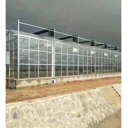 芒市溫室大棚-芒市溫室大棚廠家-光明溫室大棚(優質商家)批發