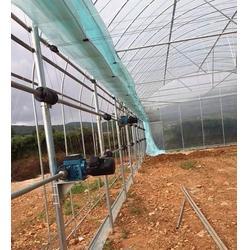 江城智能温室大棚、智能温室大棚多少钱、光明温室大棚图片