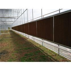光明温室大棚 临沧风机水帘棚材料-临沧风机水帘棚