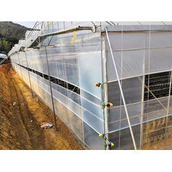 红河智能温室大棚-光明温室大棚-红河智能温室大棚多少钱一平米图片