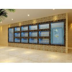 福州鑫宇海鮮池公司、福州海鮮池型號、福州海鮮池圖片