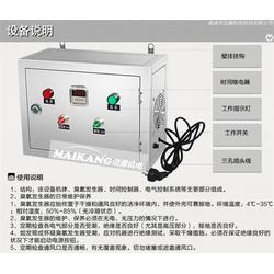 迈康机电(多图),臭氧消毒机直销,臭氧消毒机图片