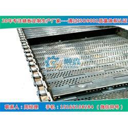 冲孔链板规格|冲孔链板|宁津顺鑫(查看)图片