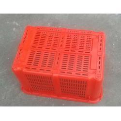 塑料周转箱托盘-塑料周转箱-佛山乔丰塑胶公司图片