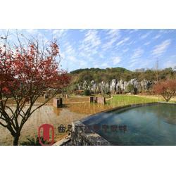 温泉景点自驾游,湖北大型天然温泉酒店,渝北温泉景点图片