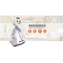 沈阳小暄机器人哪有卖_【卡伊瓦】(在线咨询)_小暄机器人图片