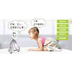 广西小暄机器人多少_【卡伊瓦】(在线咨询)_小暄机器人图片